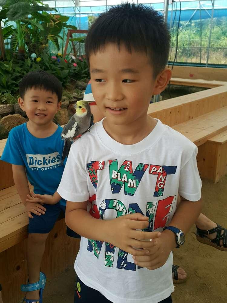 앵무새 동물원