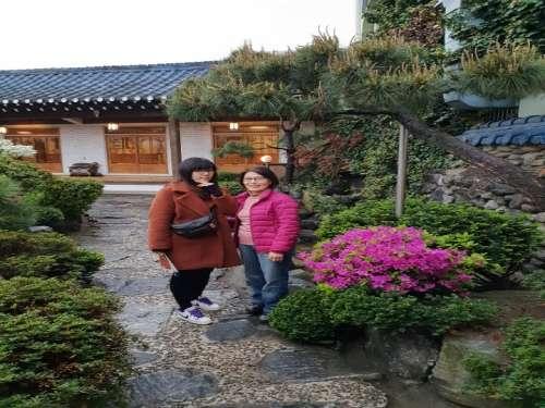 전주비빔밥가게 정원